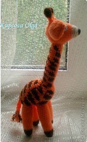 Моя младшая дочка очень любит жирафов,вот и связался как то :) фото 2