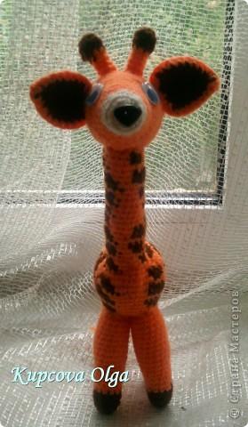 Моя младшая дочка очень любит жирафов,вот и связался как то :) фото 4