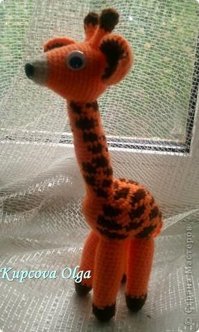 Моя младшая дочка очень любит жирафов,вот и связался как то :) фото 1