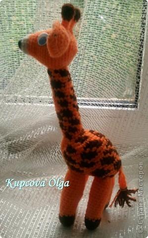 Моя младшая дочка очень любит жирафов,вот и связался как то :) фото 3