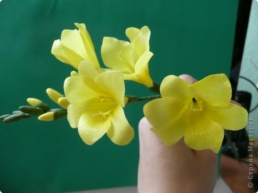 """С праздником, дорогие жители Страны Мастеров! С Великой Победой! В честь праздника """"выросли"""" у меня желтые цветы - фрезия и два тюльпана... фото 2"""