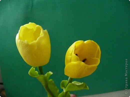 """С праздником, дорогие жители Страны Мастеров! С Великой Победой! В честь праздника """"выросли"""" у меня желтые цветы - фрезия и два тюльпана... фото 4"""