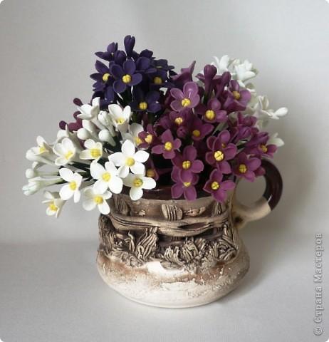Поздравляю всех с праздником ПОБЕДЫ!!!!!!!! Мира и добра нам всем!!!!  Вот, представляю на ваш суд мой долгострой. Уж не знаю, похожи ли эти цветы на сирень, но лепила именно её. В лепке я не мастер, поэтому это мой тренировочный материал.  фото 2