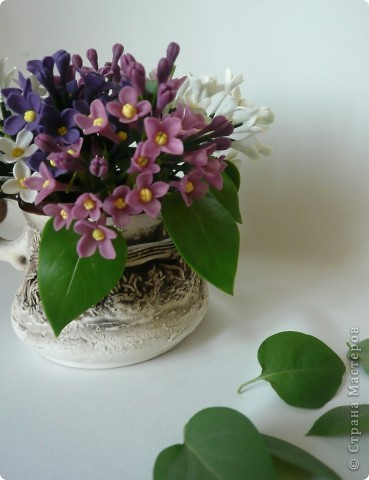 Поздравляю всех с праздником ПОБЕДЫ!!!!!!!! Мира и добра нам всем!!!!  Вот, представляю на ваш суд мой долгострой. Уж не знаю, похожи ли эти цветы на сирень, но лепила именно её. В лепке я не мастер, поэтому это мой тренировочный материал.  фото 3