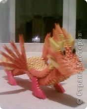 огненный дракон фото 2