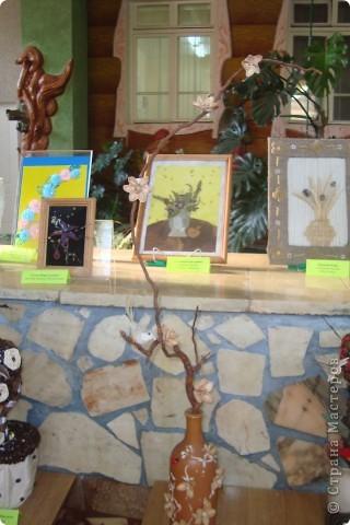 Здравствуйте ВСЕ!!!В нашем детском саду проходила выставка цветов.Хочу показать несколько работ,может,кто-то посмотрит. фото 7