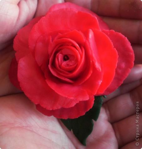 Белая роза из холодного фарфора  (первая попытка :)) фото 2