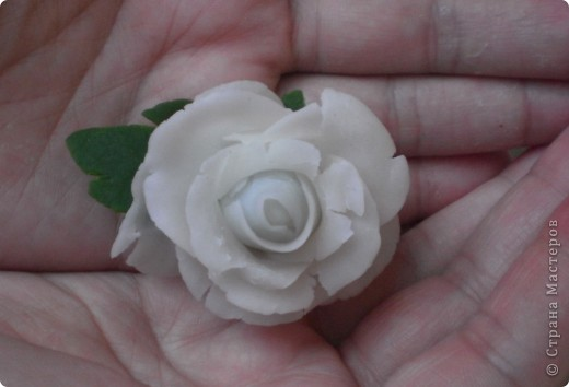 Белая роза из холодного фарфора  (первая попытка :)) фото 1