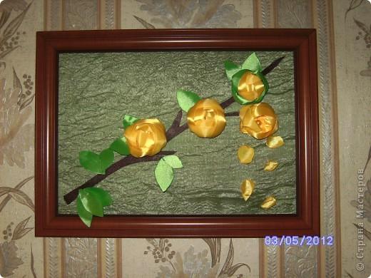 Ветвь роз)))