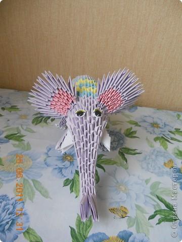 слоник фото 3