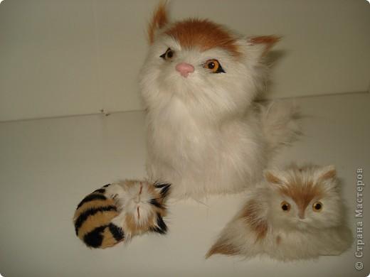 Дорогие мастерицы! Обещала я показать свою коллекцию кошек.  Начало ей положила вот эта фигурка, подаренная мне на д.р. 18 лет назад. Ее размер 2,5 см. фото 18