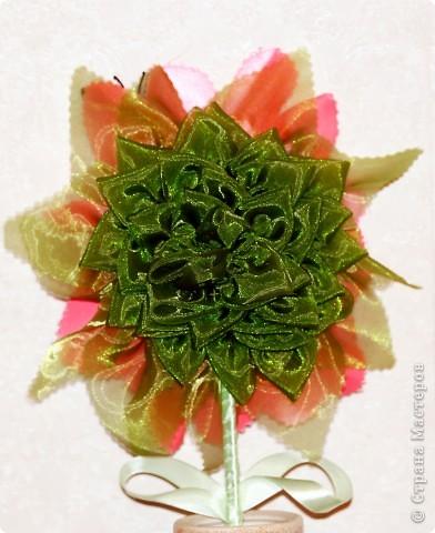 Цветок. фото 3