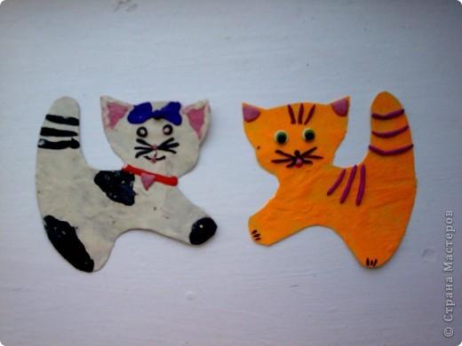 Котейки фото 2