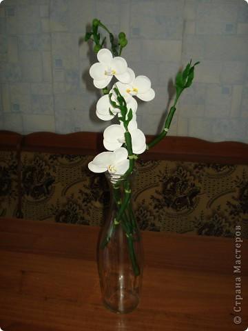 """Ульяна щедро поделилась """"рецептиком"""" бамбука http://stranamasterov.ru/node/361630?c=favorite и вот за вчерашний вечер родились такие веточки фото 2"""