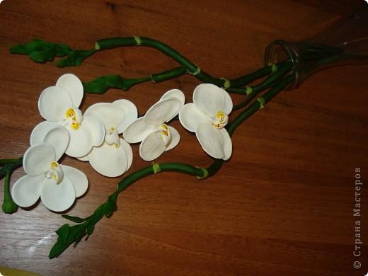 """Ульяна щедро поделилась """"рецептиком"""" бамбука http://stranamasterov.ru/node/361630?c=favorite и вот за вчерашний вечер родились такие веточки фото 5"""
