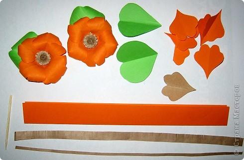 Нечаянно вырезались лепестки этого яркого, рыжего цветочка. фото 3