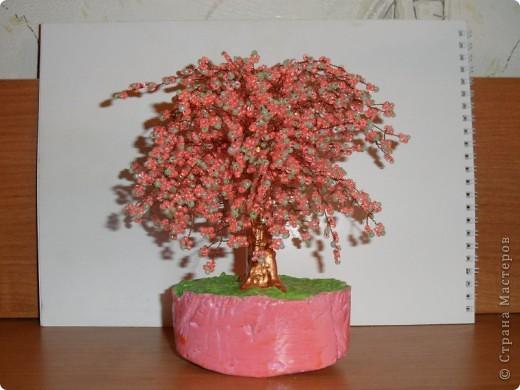 В СМ конечно много таких деревьев сделано, но увидев у TM Татьяны  http://stranamasterov.ru/node/155336?tid=451%2C1355 сакуру, очень захотелось и себе такое деревце дома. И вот оно уже живет на полочке! фото 1