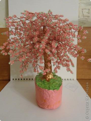 В СМ конечно много таких деревьев сделано, но увидев у TM Татьяны  http://stranamasterov.ru/node/155336?tid=451%2C1355 сакуру, очень захотелось и себе такое деревце дома. И вот оно уже живет на полочке! фото 4