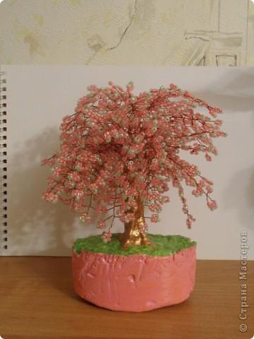 В СМ конечно много таких деревьев сделано, но увидев у TM Татьяны  http://stranamasterov.ru/node/155336?tid=451%2C1355 сакуру, очень захотелось и себе такое деревце дома. И вот оно уже живет на полочке! фото 5