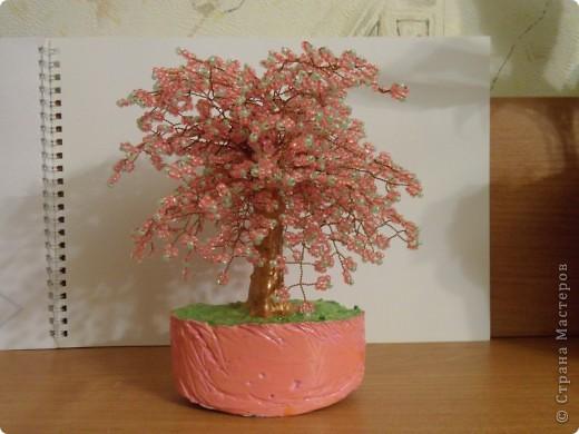 В СМ конечно много таких деревьев сделано, но увидев у TM Татьяны  http://stranamasterov.ru/node/155336?tid=451%2C1355 сакуру, очень захотелось и себе такое деревце дома. И вот оно уже живет на полочке! фото 7
