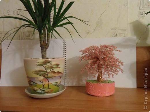 В СМ конечно много таких деревьев сделано, но увидев у TM Татьяны  http://stranamasterov.ru/node/155336?tid=451%2C1355 сакуру, очень захотелось и себе такое деревце дома. И вот оно уже живет на полочке! фото 8