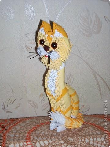 Модульными оригами котенок