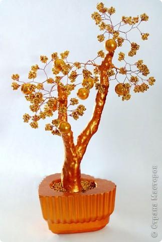 Золотая яблонька