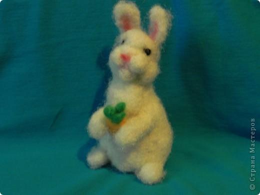 Недавно у меня появился кролик зовут его: Ушастик. Его рост всего:13см и 2мм(от начала лапок до кончиков ушек)Длина морковочки около:3см 5 мм. фото 1