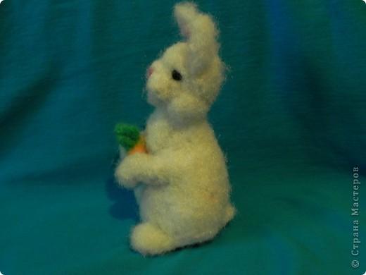Недавно у меня появился кролик зовут его: Ушастик. Его рост всего:13см и 2мм(от начала лапок до кончиков ушек)Длина морковочки около:3см 5 мм. фото 2