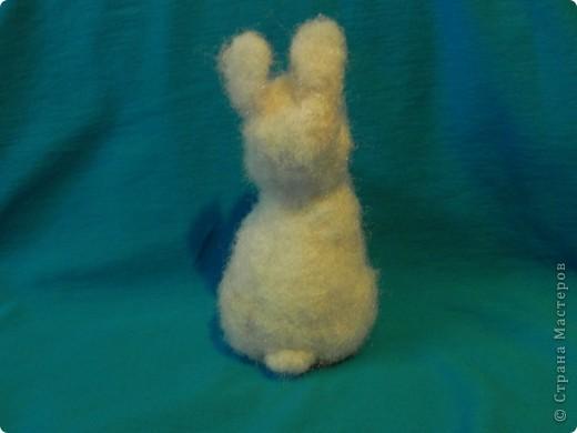 Недавно у меня появился кролик зовут его: Ушастик. Его рост всего:13см и 2мм(от начала лапок до кончиков ушек)Длина морковочки около:3см 5 мм. фото 4