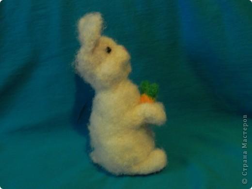 Недавно у меня появился кролик зовут его: Ушастик. Его рост всего:13см и 2мм(от начала лапок до кончиков ушек)Длина морковочки около:3см 5 мм. фото 3