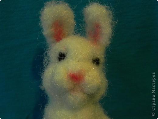Недавно у меня появился кролик зовут его: Ушастик. Его рост всего:13см и 2мм(от начала лапок до кончиков ушек)Длина морковочки около:3см 5 мм. фото 8