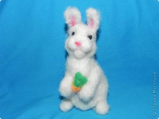 Недавно у меня появился кролик зовут его: Ушастик. Его рост всего:13см и 2мм(от начала лапок до кончиков ушек)Длина морковочки около:3см 5 мм. фото 7