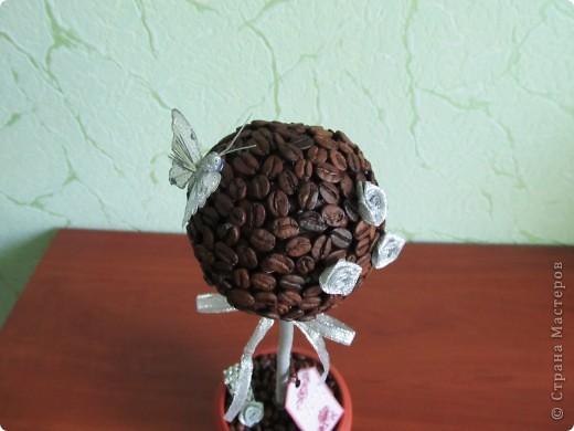 Здравствуйте дорогие мастерицы! Вот опять сотворила свои любимые кофейные топиарчики.  фото 3