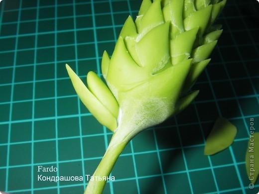 В Стране Мастеров этот цветок уже  произрастал http://stranamasterov.ru/node/166328, но я решилась выложить свою версию фото 10