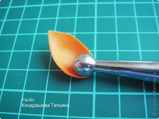 В Стране Мастеров этот цветок уже  произрастал http://stranamasterov.ru/node/166328, но я решилась выложить свою версию фото 19