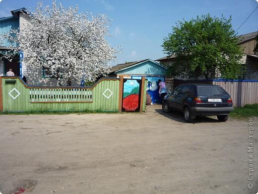 Новые рисунки на воротах у свекрови. фото 4