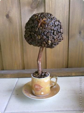 Топиарий (Кофе в кружке) фото 1