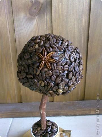 Топиарий (Кофе в кружке) фото 3