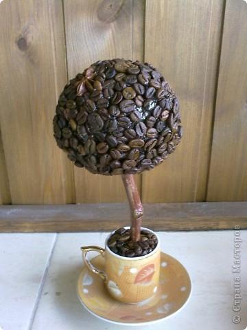 Топиарий (Кофе в кружке) фото 2