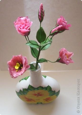 Нежные трубчатые цветки, окрашенные в акварельные тона всех цветов радуги, напоминающие то ли Эшшольцию, то ли Мак.Вырастить Эустому из семян не просто, и в культуре она требует особых навыков и знаний.  фото 4