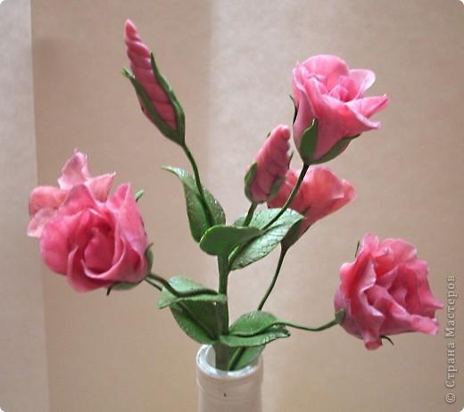 Нежные трубчатые цветки, окрашенные в акварельные тона всех цветов радуги, напоминающие то ли Эшшольцию, то ли Мак.Вырастить Эустому из семян не просто, и в культуре она требует особых навыков и знаний.  фото 1
