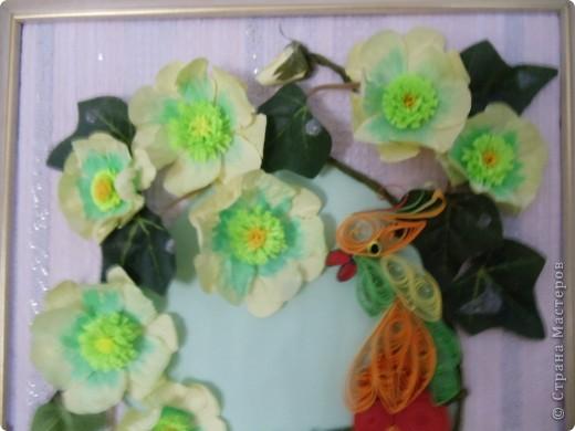 Попугайчик выполнен в технике квиллинг. Цветы - бумагопластика. Листочки от искуственного цветка. фото 2