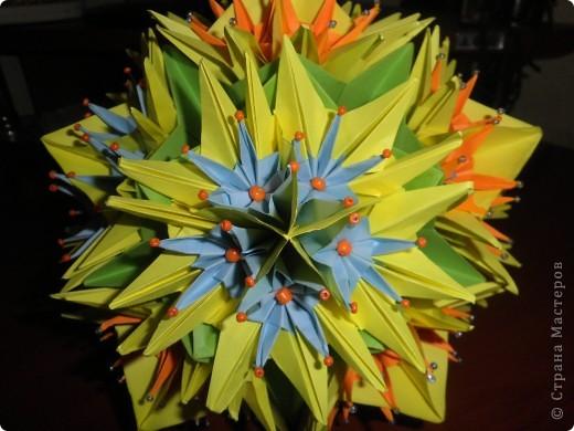 Электра с цветами фото 2
