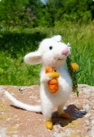 Мышонок Стёпка и весна:) фото 4