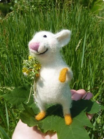 Мышонок Стёпка и весна:) фото 7