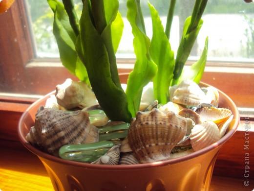 Спасибо большое Найдёновой Галине за МК орхидеи  Венерин башмачёк и Самокрутовой Татьяне ориентировалась на её солнечных орхидей.  фото 5