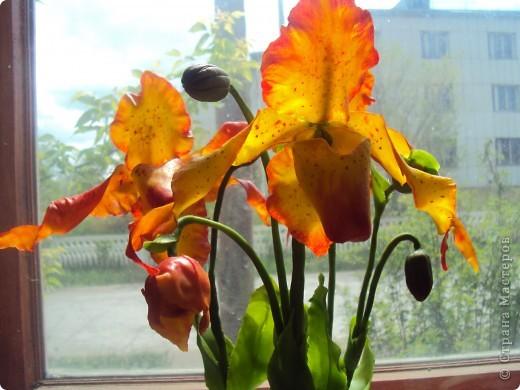 Спасибо большое Найдёновой Галине за МК орхидеи  Венерин башмачёк и Самокрутовой Татьяне ориентировалась на её солнечных орхидей.  фото 1