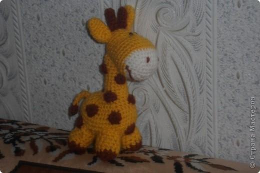 Вот такую жирафку и ослика увидела на страницах Страны мастеров и решила что мне тоже такие нужны .  фото 4