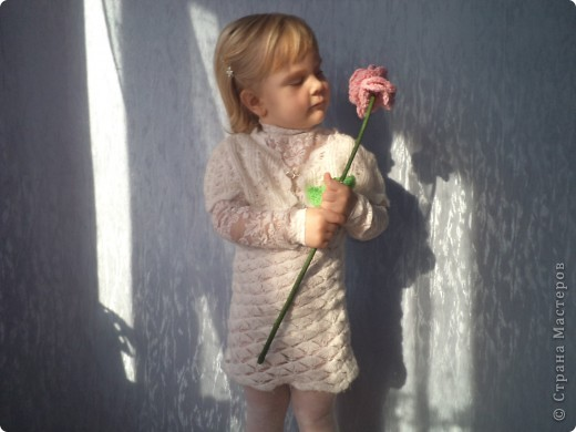 Любимый кактус! фото 9